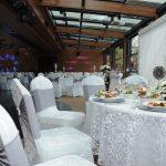 جشن عروسی خاص در ترکیه