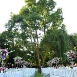 عروسی در باغ ترکیه
